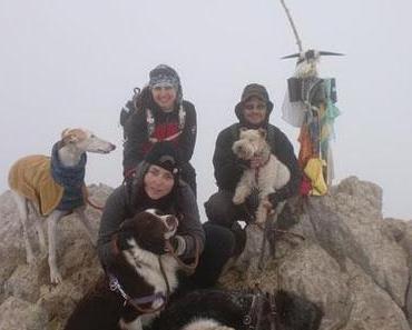 Botes i Potes: Wandern mit Hunden in Barcelona
