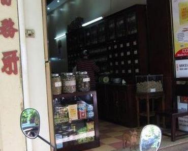 Apotheken aus aller Welt, 256: Hanoi, Vietnam
