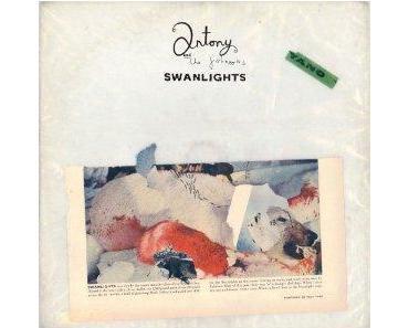 """Antony & The Johnsons """"Swanlights"""""""