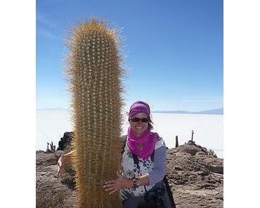 Reisen in Bolivien oder wie umarme ich einen Kaktus