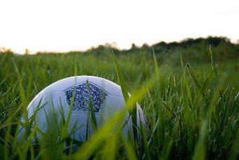 Fußball als Politikum