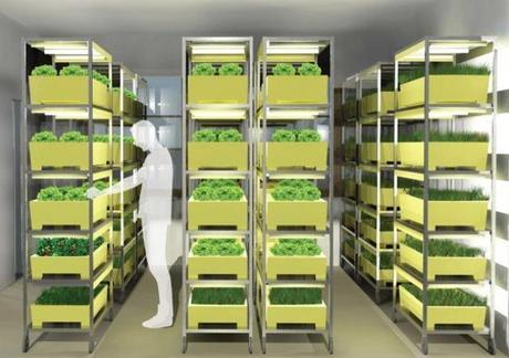 Holt Euch ´ne Farm ins Haus – Ideen zur Landwirtschaft in der Stadt