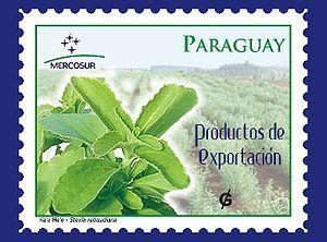 STE+ – Stevia im Joghurt jetzt auch in Paraguay