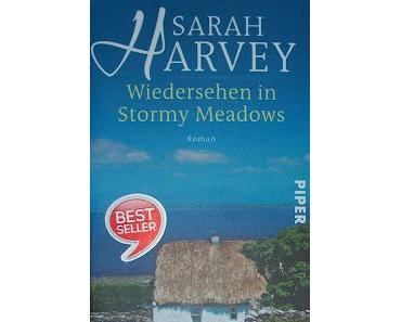 "[REZENSION] ""Wiedersehen in Stormy Meadows"""
