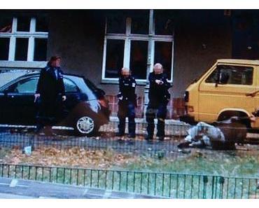 Die Polizeiaktion in Berlin erinnerte an dunkelste Zeiten in Deutschland