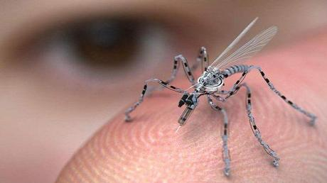 File photo shows an insect-sized spy drone.