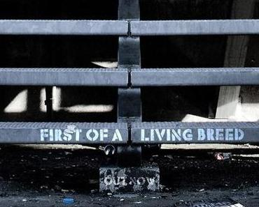 Homeboy Sandman – First of a Livling Breed [Review]