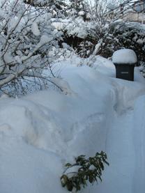 Schnee schippen oder Schnee fräsen