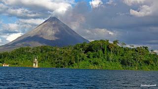 Richtig günstig nach Costa Rica: Costa Rica Perezoso