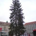 Dresden – Aufbau Weihnachtsmarkt – 578. Striezelmarkt Dresden 2012