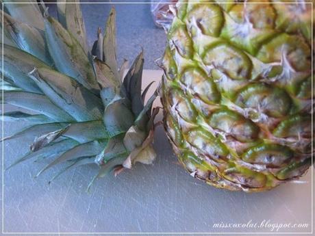 how to aus einer ananas eine ananas pflanze ziehen. Black Bedroom Furniture Sets. Home Design Ideas