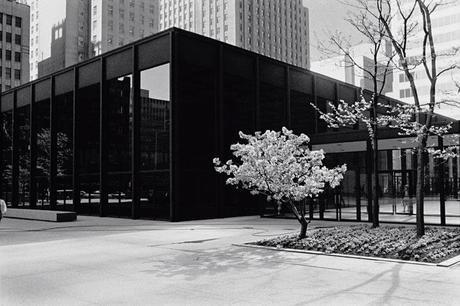 Ludwig Glaeser – Mies und sein Archivar (Toronto Dominion Centre, 1972, © Ludwig Glaeser)