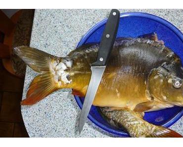 Kälteschmerz nach Fischgenuss