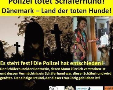 Michele Angelo fordert Gerechtigkeit für Hunde in Dänemark !!!!!!