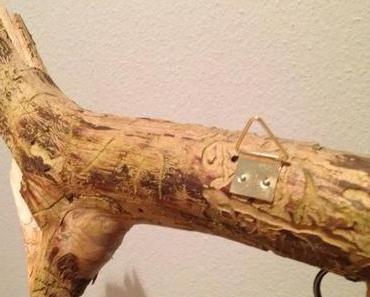 Inspiration aus dem Wald: Schlüsselanhänger aus Holz