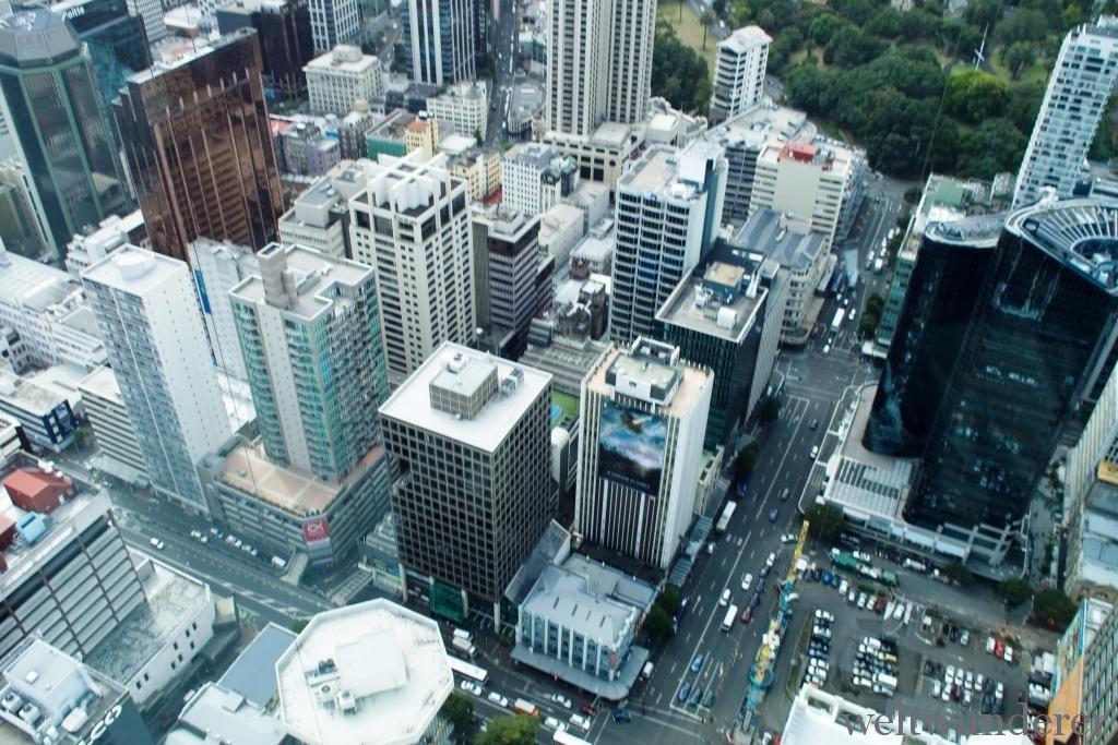 NZ Diashow 355 von 372 Nord  oder Südinsel? Eine Entscheidungshilfe