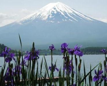 7 gute Gründe, warum Du nach Japan reisen solltest!