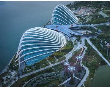 Singapur – Gucci und Kröten