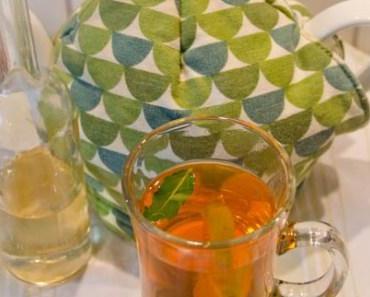 Heiss und kalt ein Genuss: Rotbuschtee mit Limette, Minze und Holunderblüten-Sirup