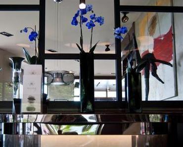 Designhotel in Istanbul: Das Gezi Bosphorus Hotel