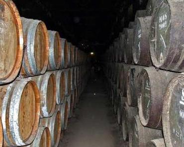 Alter Wein in Englischen Schläuchen: AGB der Gesundheitsreform müssen her