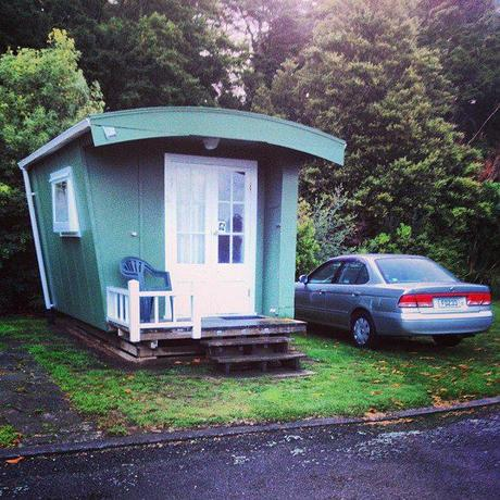 blind ber neuseelands nordinsel. Black Bedroom Furniture Sets. Home Design Ideas