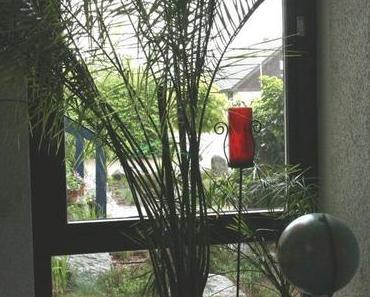 """""""Indoor Gardening"""" bei Regen und klare Spargelsuppe mit mediterranem Touch"""