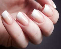 Fingernagel U2013 Grundwissen