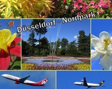 Ein Tag im Düsseldorfer Nordpark