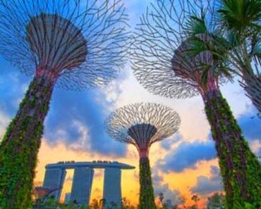 Singapurs fantastische Gärten - Gardens by the Bay