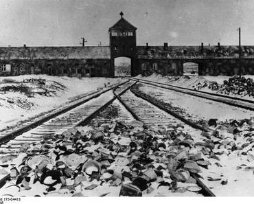 Der Holocaust und die Deutschen