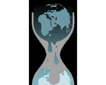 WikiLeaks und die Informationshoheit