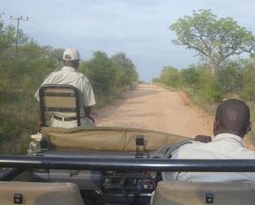 Reisebericht Südafrika: Der Ruf der Wildnis, Teil 2: Auf Kuschelkurs mit Elefant, Löwe & Co