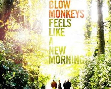 The Blow Monkeys und Dr Robert mit neuem Album