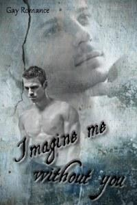 imagine-me-without-you