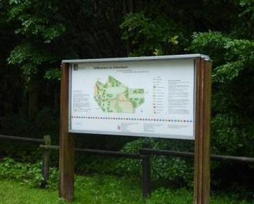 Mantrailing im Arboretum Main-Taunus