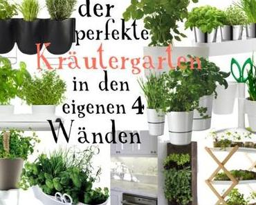 Basilikum & Co: Der perfekte Kräutergarten