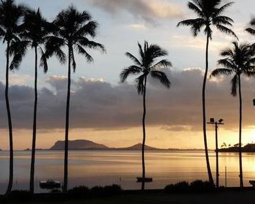 Hawaii zum Greifen nahe: Auf was ich mich am meisten freue!