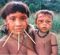 Yanomami Frau mit Kind (© Cmacauley / commons.wikimedia.org)