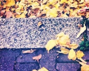 Berlinspiriert Lifestyle: Derbst Herbst (Bildergalerie)