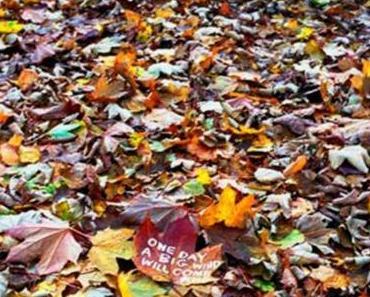 Autumn Mix (free mixtape)