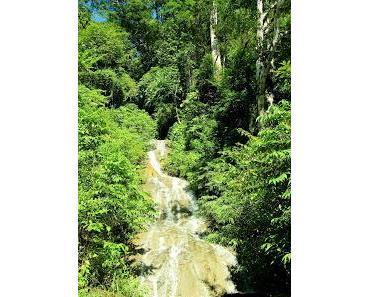Abenteuer Costa Rica / am rauschenden Bach mitten im Regenwald