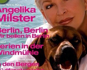 Magazin Dog and Travel