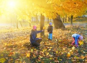 Spiele Herbst