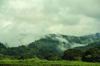 Abenteuer Costa Rica / auf den Spuren der Krokodile.. und ein kleiner Adrenalinschub