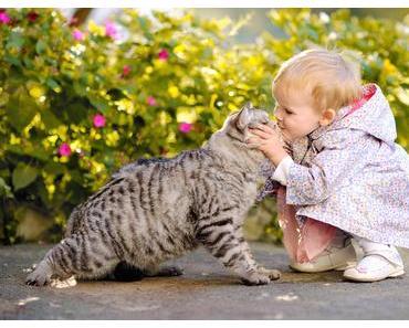 Mami, ich möchte ein Haustier!