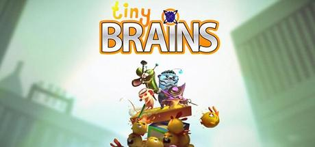 tiny_brains
