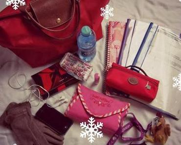 5 Tage - 5 Taschen: Tag 1 - Longchamp Le Pliage M