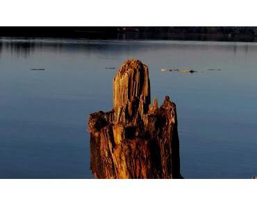 Magritte am Loch Forggensee? Ein Novemberbummel in Schwangau von Brunnen nach Waltenhofen