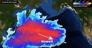Hawaiis strahlende Zukunft